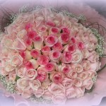 Rose 15. 99 stems $600